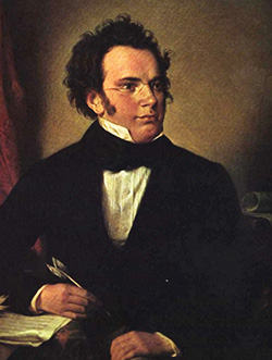 The Complete Piano Music by Franz Schubert
